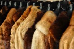 Fur jackets. At the store Royalty Free Stock Photos