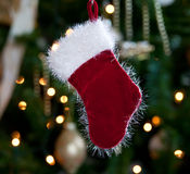 Fur lined stocking in front of xmas tree stock photo