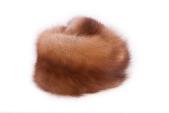 Fur of a marten Royalty Free Stock Photography