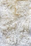 Fur material Royalty Free Stock Photography