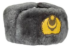 Fur military uniform cap Royalty Free Stock Photography