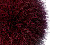 Fur  over the white background. Shape of red fur  over the white background. 3D illustration Royalty Free Stock Photos
