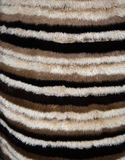 Fur is painted of beige, brown and black stripes. Texture of fur is painted of beige, brown and black stripes Royalty Free Stock Photography