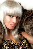 Fur passion Stock Photography