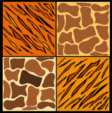 Fur pattern Royalty Free Stock Photography