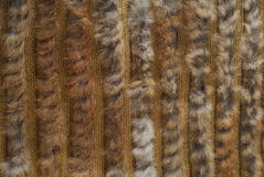 Fur pattern Royalty Free Stock Images