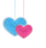 Fur pink and blue hearts for Valentines Day isolated on white ba Royalty Free Stock Image