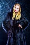 Fur salon Stock Photography