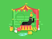 Fur seal in a circus. Animal mammal, marine character trained with flipper, vector illustration Stock Images