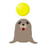 Fur seal. Circus show with animals. Sea dog plays with a yellow ball. On white Royalty Free Stock Image