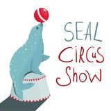 Fur Seal Circus Show Lettering Poster Stock Photography
