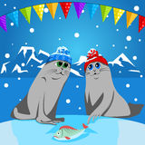 Fur seal pup in colorful hat Stock Photos