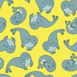 Fur seal.Vector seamless pattern. Stock Photo