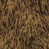 Fur seamless generated texture Stock Photos