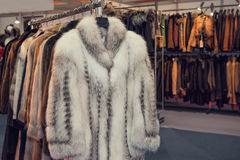 Fur shop. With a lot of products Royalty Free Stock Photos