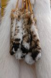 Fur tails and polar fox furs royalty free stock images
