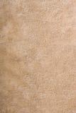 Fur texture Royalty Free Stock Image