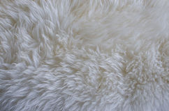 Fur texture as background Royalty Free Stock Photo