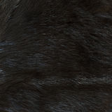 Fur texture Royalty Free Stock Images