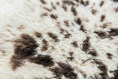 Fur texture. Close up of an animal colored fur texture Royalty Free Stock Images