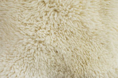 Fur texture. Old white sheepskin Stock Image