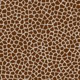 Fur texture - seamless Stock Photos