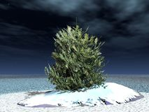 Fur-tree. Lonely fur-tree in steppe shined by a moonlight - christmas mood Vector Illustration