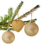 Fur tree Stock Image