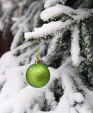 Fur-tree and a ball on a branch. Fur-tree in a snow and a ball on a branch Royalty Free Stock Images