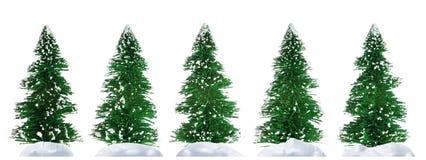 Fur-tree and snow Stock Photo