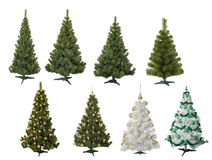 Fur-trees. Christmas fur-trees on white background Royalty Free Stock Images