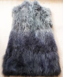 Fur vest Royalty Free Stock Photography