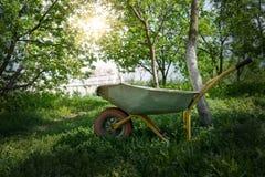 Fura w ogródzie pod światłem słonecznym Zdjęcia Stock