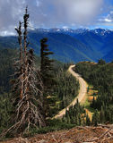 Furacão Ridge, península olímpica, Washington Fotos de Stock Royalty Free