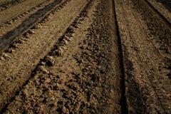 Furchen auf braunem Boden Lizenzfreies Stockbild