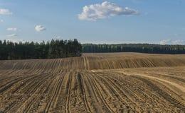 Furchen auf dem gepflogenen Gebiet im hügeligen Gelände im Frühjahr Lizenzfreies Stockfoto