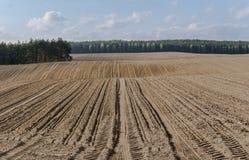 Furchen auf dem gepflogenen Gebiet im hügeligen Gelände im Frühjahr Stockfotografie
