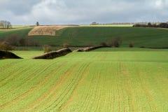 Furchen in einem Feldlandwirtschaftsboden Lizenzfreie Stockbilder