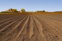 Furchen rudern auf dem Gebiet, das im Frühjahr für pflanzende Ernten vorbereitet wird Stockbilder