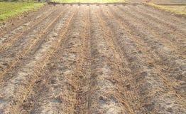 Furchen rudern Muster von den gepflogenen landwirtschaftlichen Feldern, die für p vorbereitet werden Stockfotos