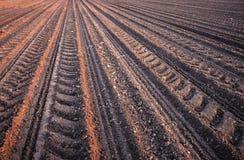 Furchenreihenmuster auf einem gepflogenen Gebiet bereitete sich für pflanzende Ernten im Frühjahr vor Stockfoto