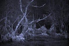 Furchtsame Landschaft mit totem Baum lizenzfreie stockbilder