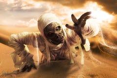 Furchtsame Mama in einer Wüste bei Sonnenuntergang Stockfotografie