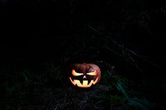 Furchtsamer Kürbis Halloweens im Wald in der Dunkelheit mit glühendem e Lizenzfreies Stockfoto
