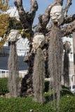 Furchtsamer Stein - Felsenskulpturen von riesigen Köpfen schnitzten in die Sandsteinklippe Stockfotografie