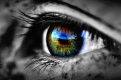 Furchtsames Augen-Detail Stockfotos