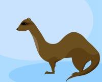 Furet de sable Illustration Libre de Droits