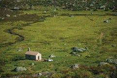 Furgone rurale davanti alla casetta sui campi verdi fotografia stock