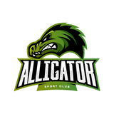 Furious alligator sport vector logo concept isolated on white background. Stock Photo