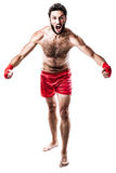 Furious boxer Royalty Free Stock Images